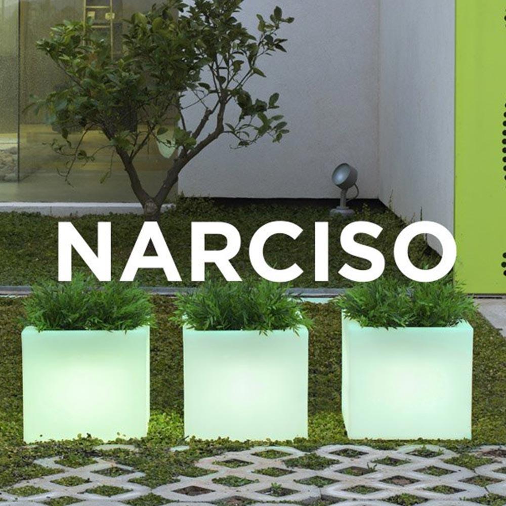 NG Narciso kaspó