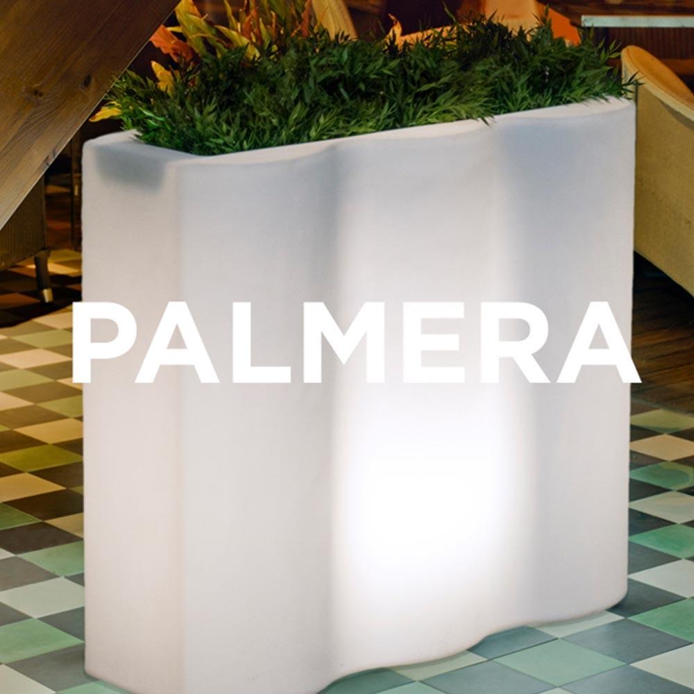 NG Palmera kaspó